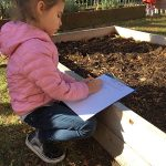 child in school garden